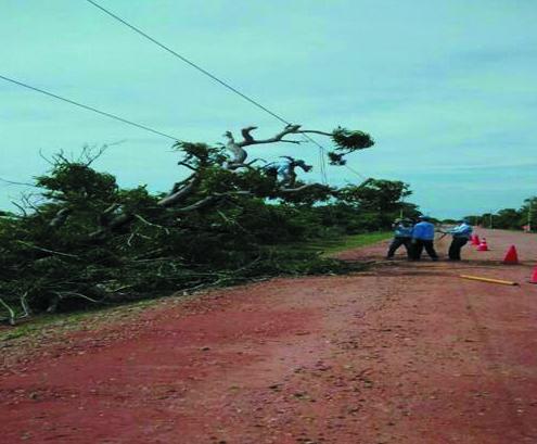 Vendaval afectó servicio de energía en  El Copey, Algarrobo y Loma delBálsamo