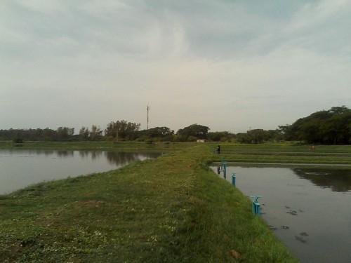 Corpocesar intenta mitigar contaminación del ríoCesar