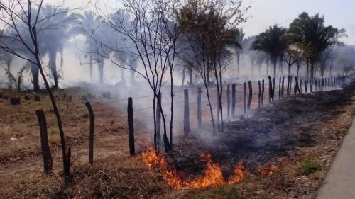 Continúan incendios forestales en elCesar.