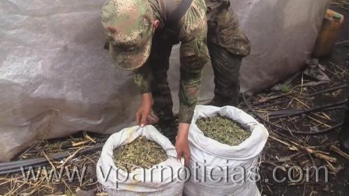 Ejército capturó seis personas dedicadas alnarcotráfico