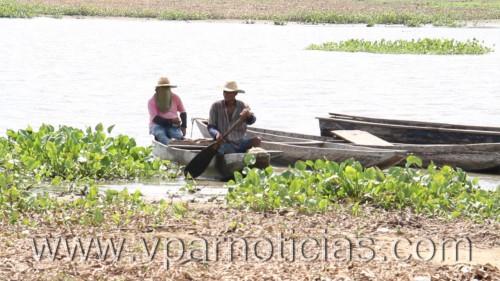 Pescadores de la Ciénaga de Zapatosa gravemente afectados por Fenómeno delNiño