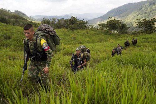 La Paz, Cesar y Fonseca, en La Guajira serán zonas de concentración de lasFarc