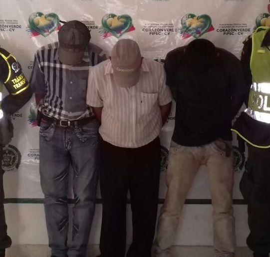 Policía recuperó 13 semovientes hurtados enCurumaní