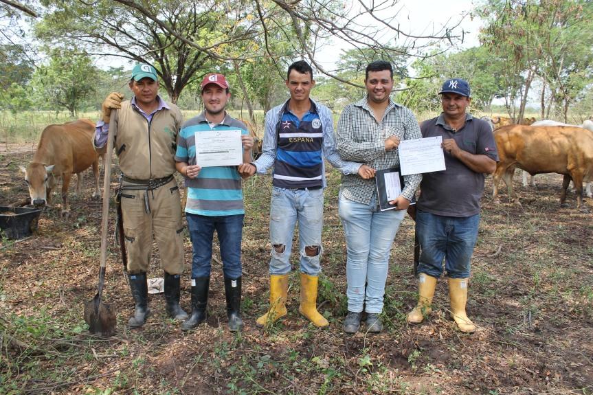 Motilonia, certificado como hato libre de Brucelosis y Tuberculosis enbovinos
