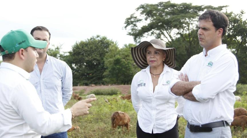 Gobernación le apunta al fortalecimiento del sector ovino caprino en elCesar