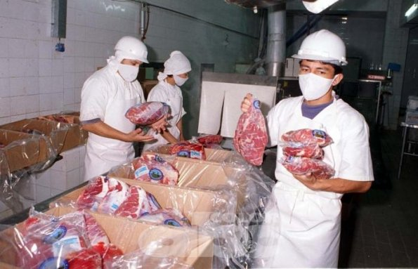 Colombia exportará carne bovina haciaRusia